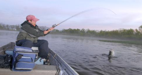 information to help you understand the lifestyle of a largemouth bass